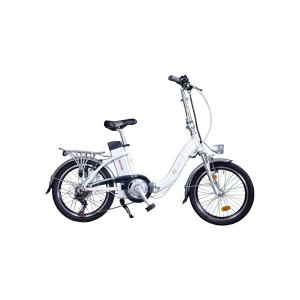 Bici eléctrica Pedelec 1000