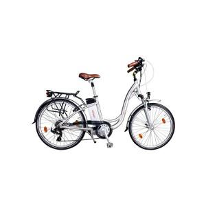 Bici eléctrica Pedelec 4000
